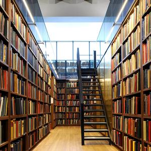 Библиотеки Золотково